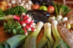 Vegan-Vegetarian-Catering-225